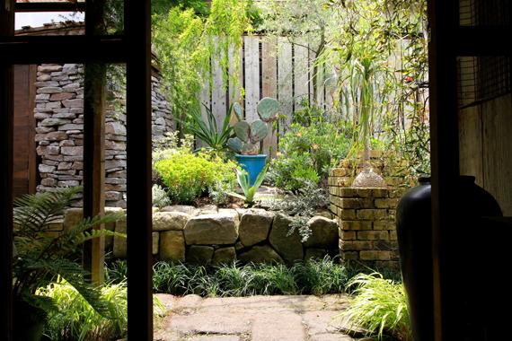 鎌倉老舗カフェ「侘助」に世界の植物を集めた庭が完成