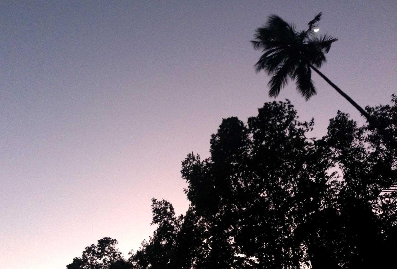 スリランカの夜